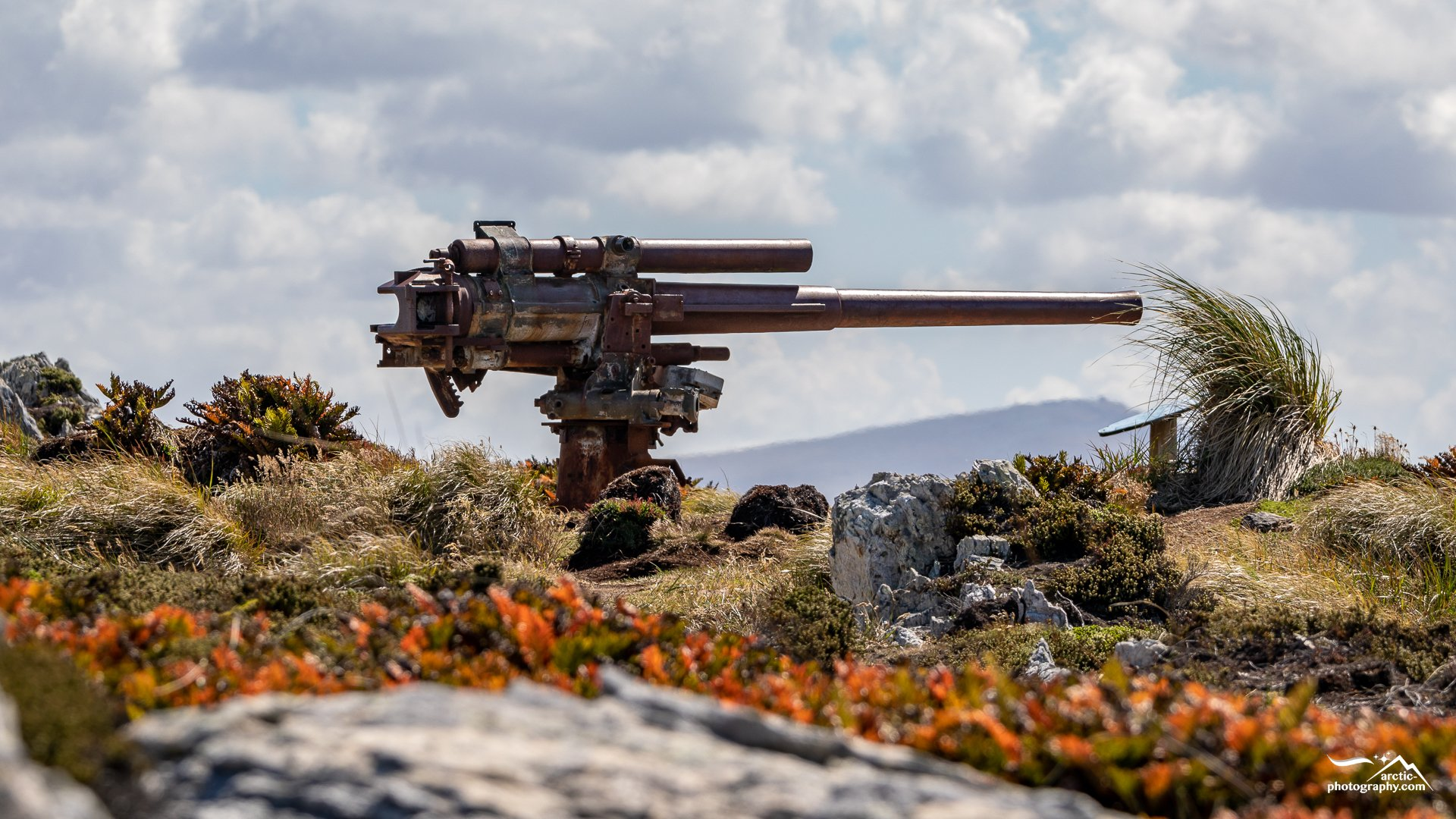 Historic army equipment, Gypsy cove, Falkland Islands